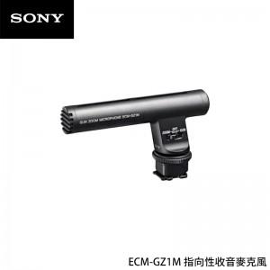 Sony 索尼 ECM-GZ1M 指向性收音麥克風 高動態收音 攝影用收音 附防風罩 降噪